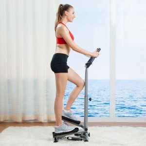 Sunny Health & Fitness Stepper With Handlebar